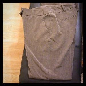 Light brown bootcut dress pants